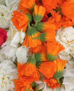 花祭壇をジャイアンツカラー