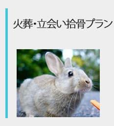 火葬・立会い拾骨プラン
