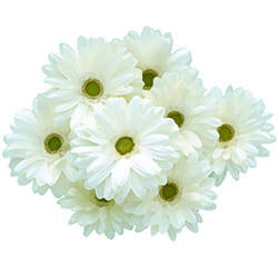 献花について