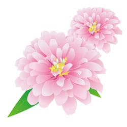 テレビなどでよく見る花祭壇