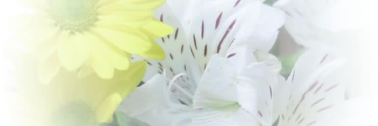 スタッフブログ|浦安市斎場無料相談窓口 2013-03-13