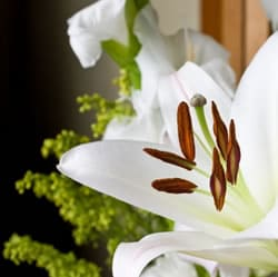 祭壇に飾られた花